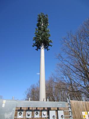Go Green Leasing >> Monopine Leesburg VA